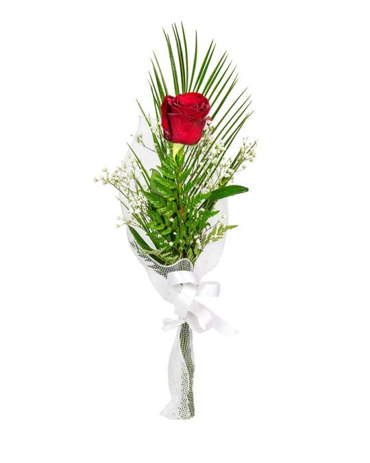 Rosa individual vermella